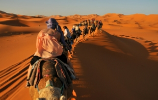 6 Day tour from Casablanca To Desert